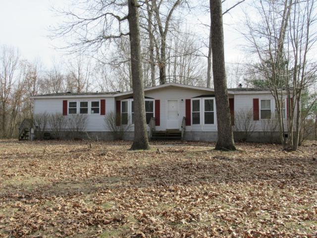 1099 41st Street, Allegan, MI 49010 (MLS #19012550) :: Matt Mulder Home Selling Team
