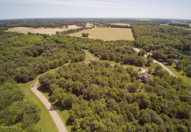 Lot 88 Canoe Road, Three Rivers, MI 49093 (MLS #19012634) :: CENTURY 21 C. Howard