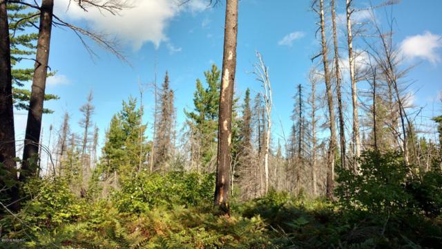 23305 Duck Lake Trail, Newberry, MI 49868 (MLS #19012638) :: CENTURY 21 C. Howard
