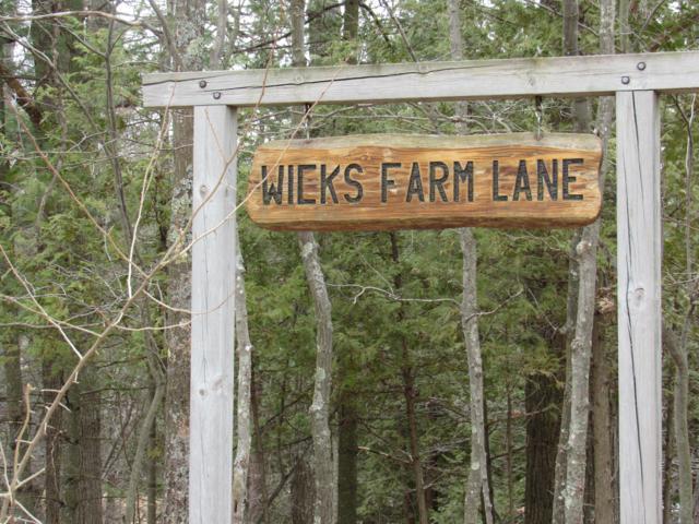 8292 W Wicks Farm Lane, Irons, MI 49644 (MLS #19012799) :: Matt Mulder Home Selling Team