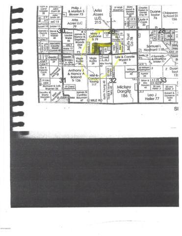 45TH Avenue, Remus, MI 49340 (MLS #19012946) :: CENTURY 21 C. Howard