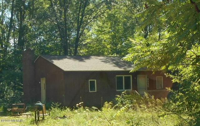 3348 127th Avenue, Allegan, MI 49010 (MLS #19013000) :: Deb Stevenson Group - Greenridge Realty