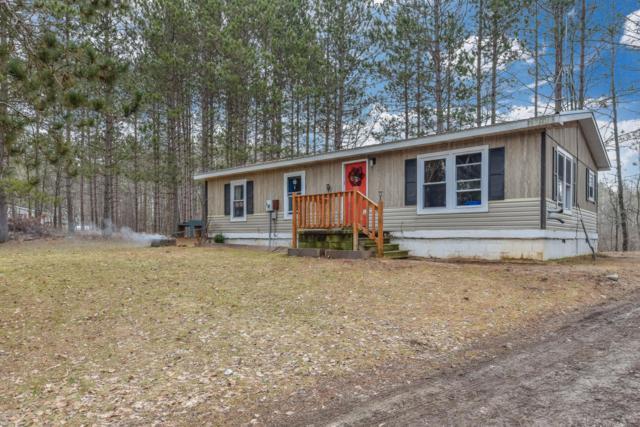 21639 Nicholas Lane, Reed City, MI 49677 (MLS #19013010) :: Matt Mulder Home Selling Team