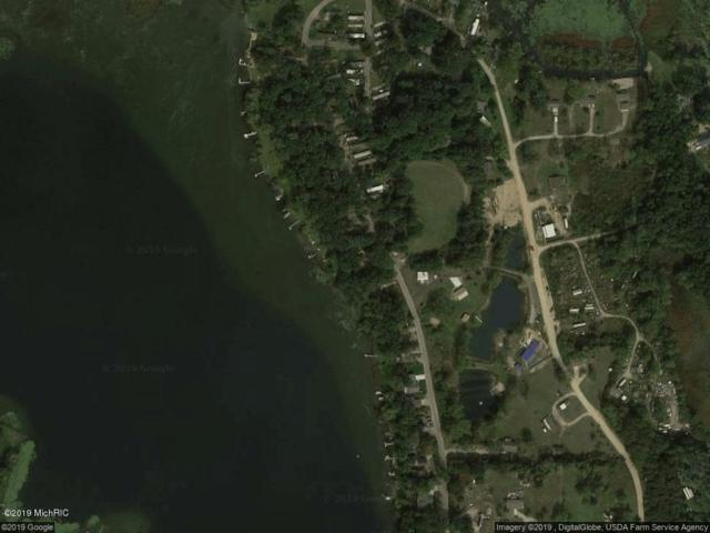 322 Lakeside Drive, Delton, MI 49046 (MLS #19013059) :: CENTURY 21 C. Howard