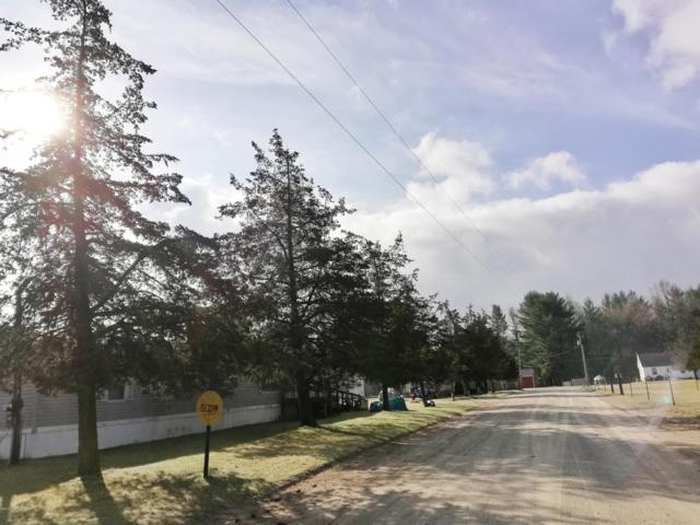 265 E Echo Drive, White Cloud, MI 49349 (MLS #19013260) :: Deb Stevenson Group - Greenridge Realty