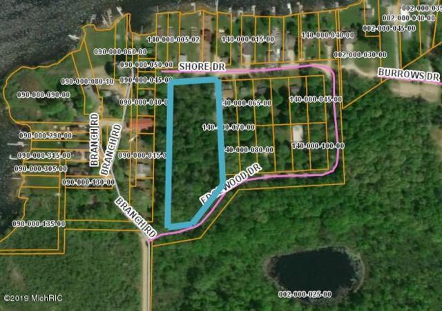1971 Shore Drive, Orleans, MI 48865 (MLS #19013405) :: Deb Stevenson Group - Greenridge Realty