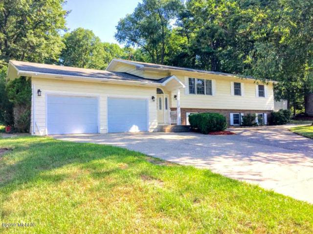 17262 Outer Drive, Big Rapids, MI 49307 (MLS #19013595) :: Deb Stevenson Group - Greenridge Realty