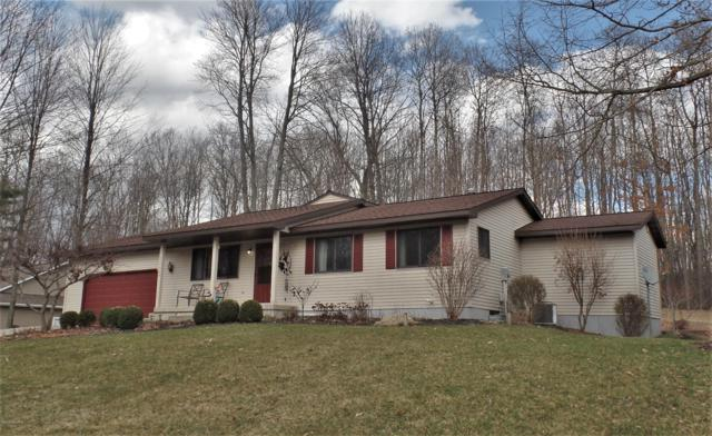 13902 Jet Drive, Big Rapids, MI 49307 (MLS #19013650) :: Deb Stevenson Group - Greenridge Realty