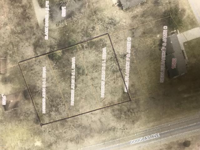 000 Douglas Avenue, Kalamazoo, MI 49009 (MLS #19013685) :: Deb Stevenson Group - Greenridge Realty