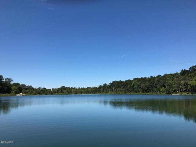 Huyck Lake Lane #14, Marcellus, MI 49067 (MLS #19013758) :: CENTURY 21 C. Howard