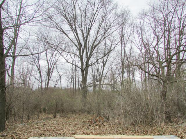 E Southern Road, Coldwater, MI 49036 (MLS #19013777) :: CENTURY 21 C. Howard