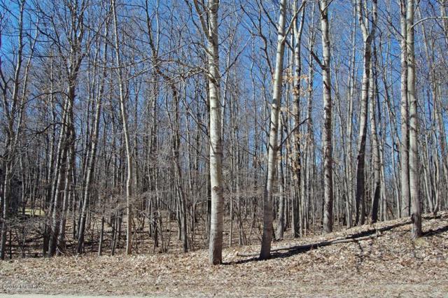 9966 Golf Port Drive, Canadian Lakes, MI 49346 (MLS #19013813) :: Deb Stevenson Group - Greenridge Realty