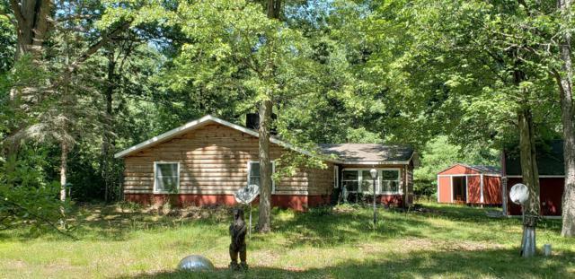 8360 E Johnson Road, Branch, MI 49402 (MLS #19013950) :: Matt Mulder Home Selling Team