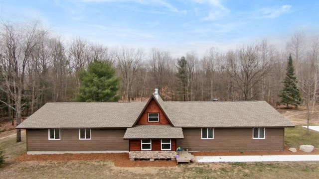 2697 N 176th Avenue, Walkerville, MI 49459 (MLS #19014008) :: Matt Mulder Home Selling Team