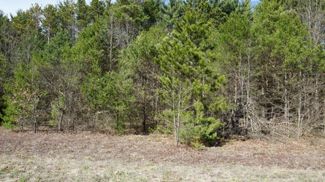 Lot 10 Pine Ridge Circle, Lawton, MI 49065 (MLS #19014025) :: JH Realty Partners
