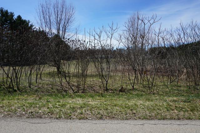 Lot 17 Meadow Lane, Lawton, MI 49065 (MLS #19014033) :: JH Realty Partners