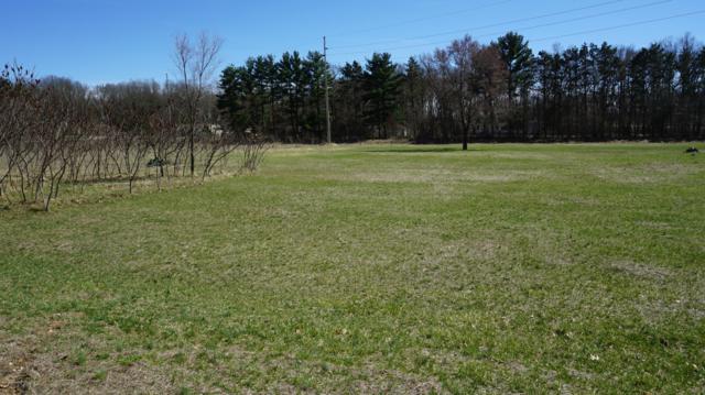Lot 20 Pine Ridge Circle, Lawton, MI 49065 (MLS #19014037) :: Matt Mulder Home Selling Team