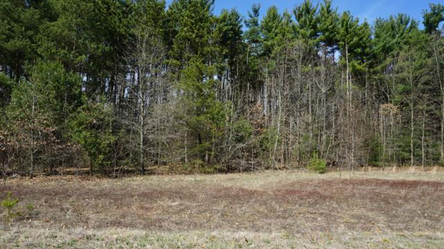 Lot 8 Pine Ridge Circle, Lawton, MI 49065 (MLS #19014044) :: JH Realty Partners