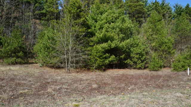 Lot 9 Pine Ridge Circle, Lawton, MI 49065 (MLS #19014046) :: JH Realty Partners