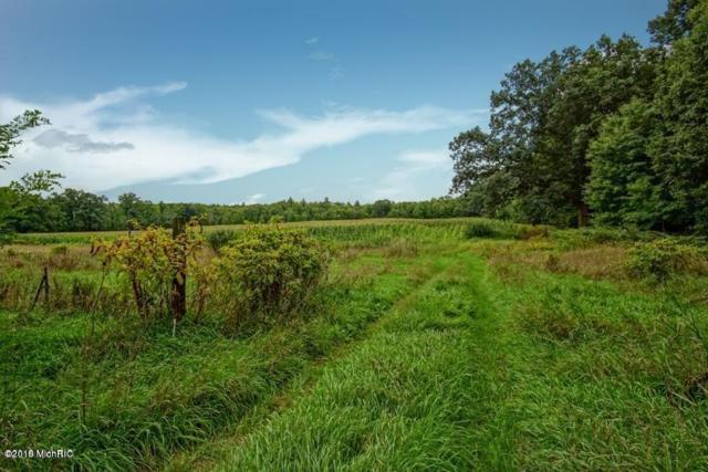 00 Twentieth Avenue, White Cloud, MI 49349 (MLS #19014243) :: Deb Stevenson Group - Greenridge Realty