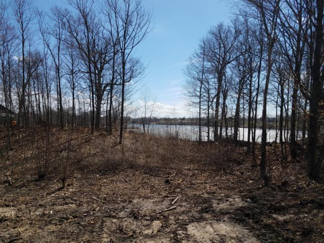 Lot 420 Lakeside Drive, Perrinton, MI 48871 (MLS #19014352) :: Matt Mulder Home Selling Team