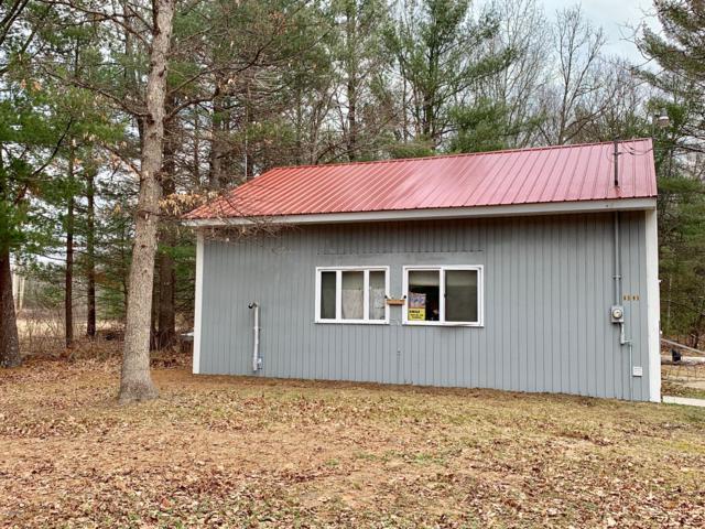 6339 S Helen Circle, Baldwin, MI 49304 (MLS #19014385) :: Matt Mulder Home Selling Team