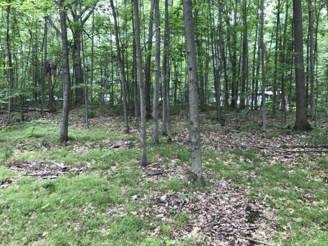 Nn S Forest Trail, Leroy, MI 49655 (MLS #19014481) :: Deb Stevenson Group - Greenridge Realty