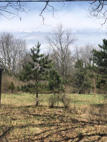 85 Morgan Road, Battle Creek, MI 49037 (MLS #19014774) :: Matt Mulder Home Selling Team