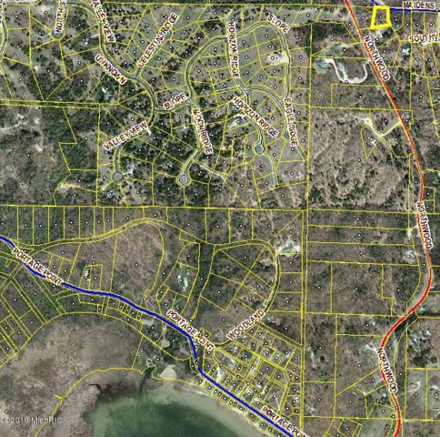 1.17 Acres Maidens Road, Onekama, MI 49675 (MLS #19015224) :: Deb Stevenson Group - Greenridge Realty