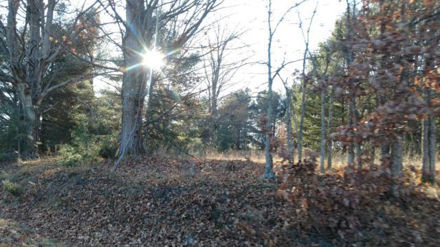 12450 Nine Mile Road, Kaleva, MI 49645 (MLS #19015241) :: Deb Stevenson Group - Greenridge Realty