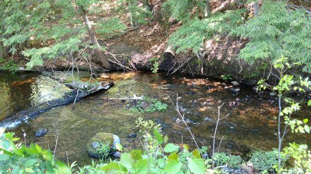 18.5 Acres Horseshoe Creek Road, Kaleva, MI 49645 (MLS #19015249) :: Deb Stevenson Group - Greenridge Realty