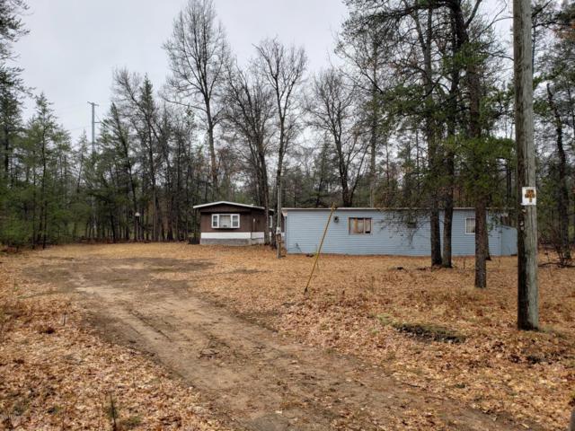 8613 N Boss Road, Irons, MI 49644 (MLS #19015253) :: Deb Stevenson Group - Greenridge Realty