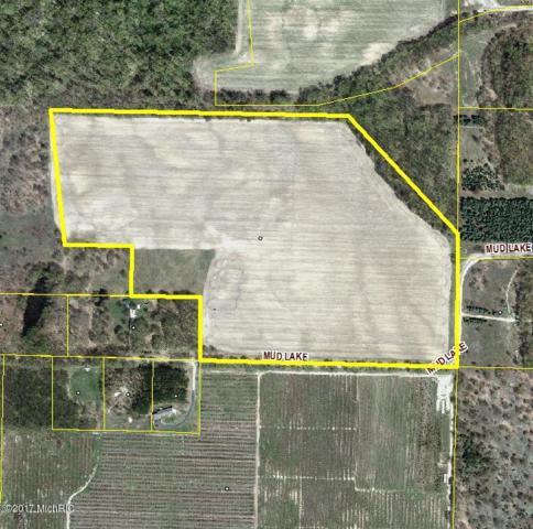 45 Acres Mud Lake Road, Bear Lake, MI 49614 (MLS #19015260) :: Matt Mulder Home Selling Team