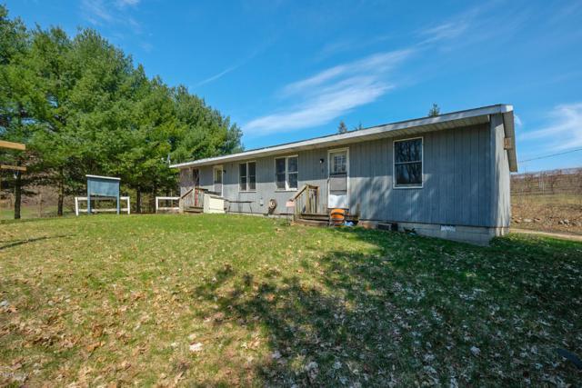 25456 Co Rd 358, Lawton, MI 49065 (MLS #19015365) :: Matt Mulder Home Selling Team