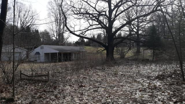 723 W Deer Run Road, Free Soil, MI 49411 (MLS #19015447) :: Deb Stevenson Group - Greenridge Realty