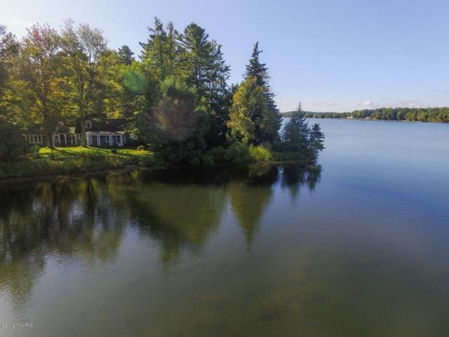 6476 Three Pines Road, Bear Lake, MI 49614 (MLS #19015496) :: Matt Mulder Home Selling Team