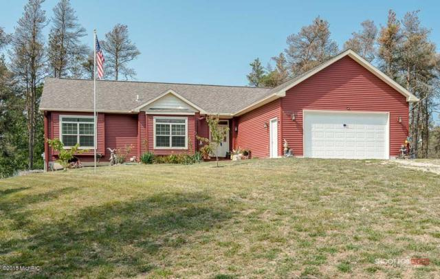 10982 Pine Acres Court, Nunica, MI 49448 (MLS #19015547) :: Matt Mulder Home Selling Team