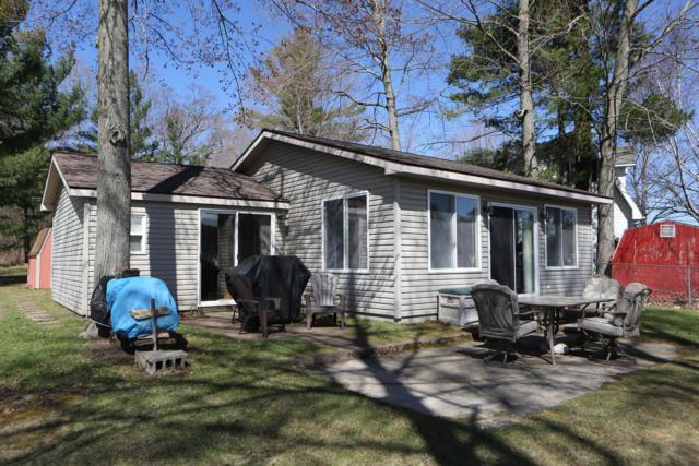 1301 Shady Lane, Greenville, MI 48838 (MLS #19015645) :: Matt Mulder Home Selling Team