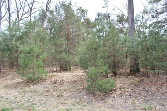VL Tenderfoot Court Lot 40, Whitehall, MI 49461 (MLS #19015888) :: JH Realty Partners
