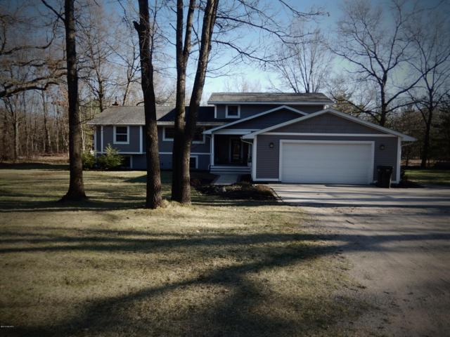 2268 E 95th Street, Newaygo, MI 49337 (MLS #19015904) :: Deb Stevenson Group - Greenridge Realty