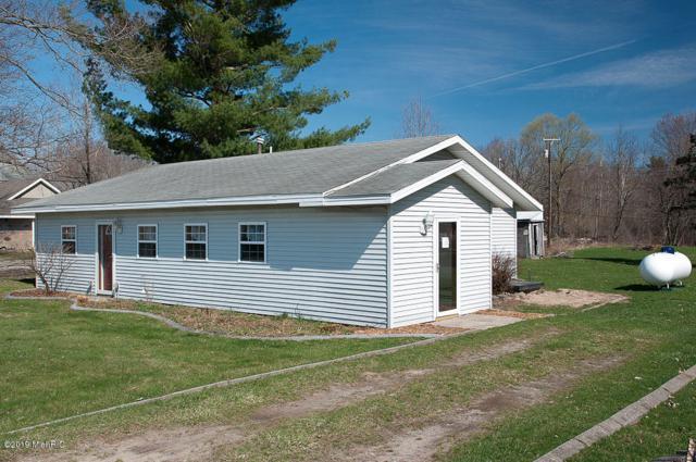 200 Pierson Road, Pierson, MI 49339 (MLS #19016308) :: Matt Mulder Home Selling Team