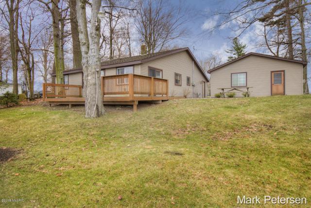 231 Beechwood Drive SW, Stanton, MI 48888 (MLS #19016338) :: Matt Mulder Home Selling Team