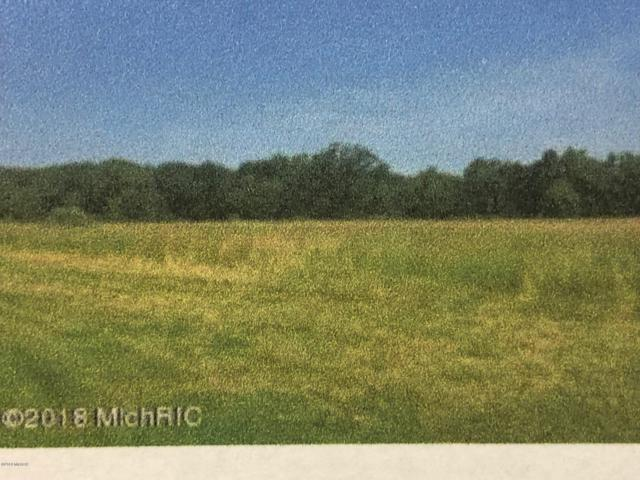 Ewing Road, Lawton, MI 49065 (MLS #19016791) :: Deb Stevenson Group - Greenridge Realty