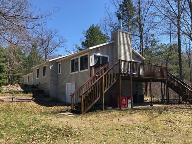 9673 N Kings Point, Irons, MI 49644 (MLS #19016858) :: Matt Mulder Home Selling Team