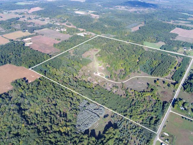 9650 Maidens Road Road, Bear Lake, MI 49614 (MLS #19017079) :: Deb Stevenson Group - Greenridge Realty