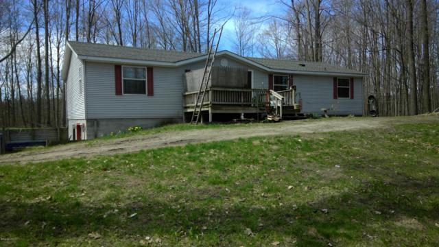 3649 W Jefferson Road, Pentwater, MI 49449 (MLS #19017098) :: Matt Mulder Home Selling Team