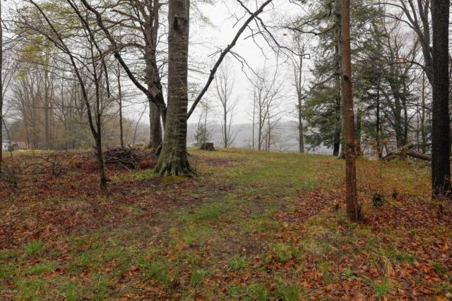 Robinway Drive, Marcellus, MI 49067 (MLS #19017340) :: Deb Stevenson Group - Greenridge Realty