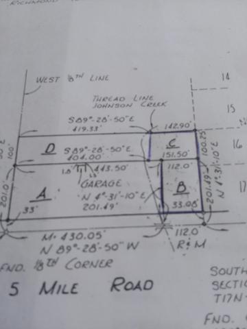 W 5 Mile Road, Reed City, MI 49677 (MLS #19017478) :: Deb Stevenson Group - Greenridge Realty
