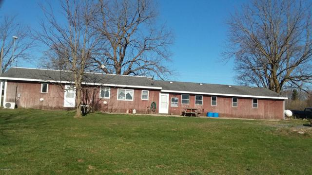 280 S Hamon, Walkerville, MI 49459 (MLS #19017698) :: Deb Stevenson Group - Greenridge Realty