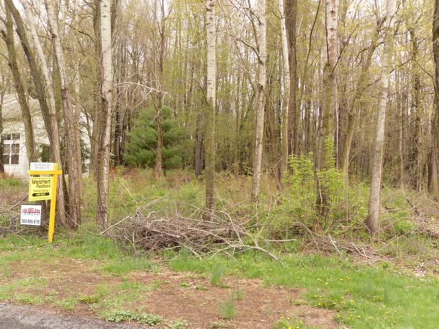 158 Summit Drive, Allegan, MI 49010 (MLS #19017887) :: Deb Stevenson Group - Greenridge Realty